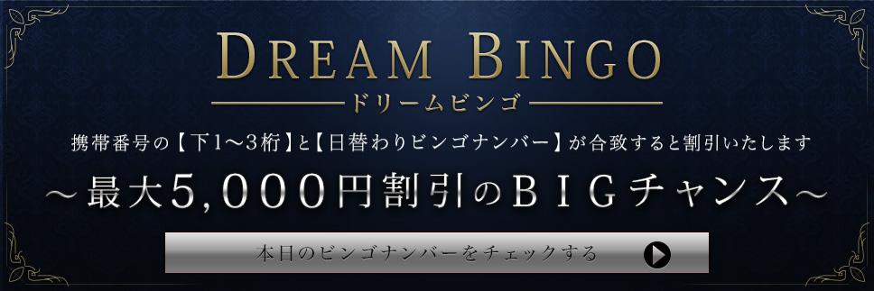 DREAM BINGO【毎日5,000円割引のチャンス】