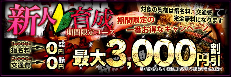 『新人育成コース』最大3000円割引!!